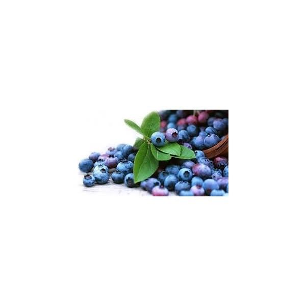 Confiture Myrtilles ARTISANALE EXTRA Sans Sucre avec Édulcorant Pour Diabétiques