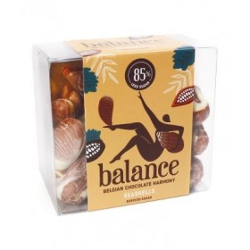 Ballotin defruits de mer en chocolat sans sucre pour diabétiques 170g  B